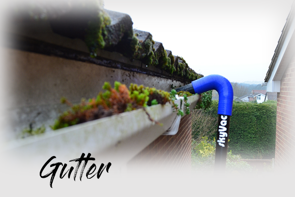 Gutter cleaning WEB