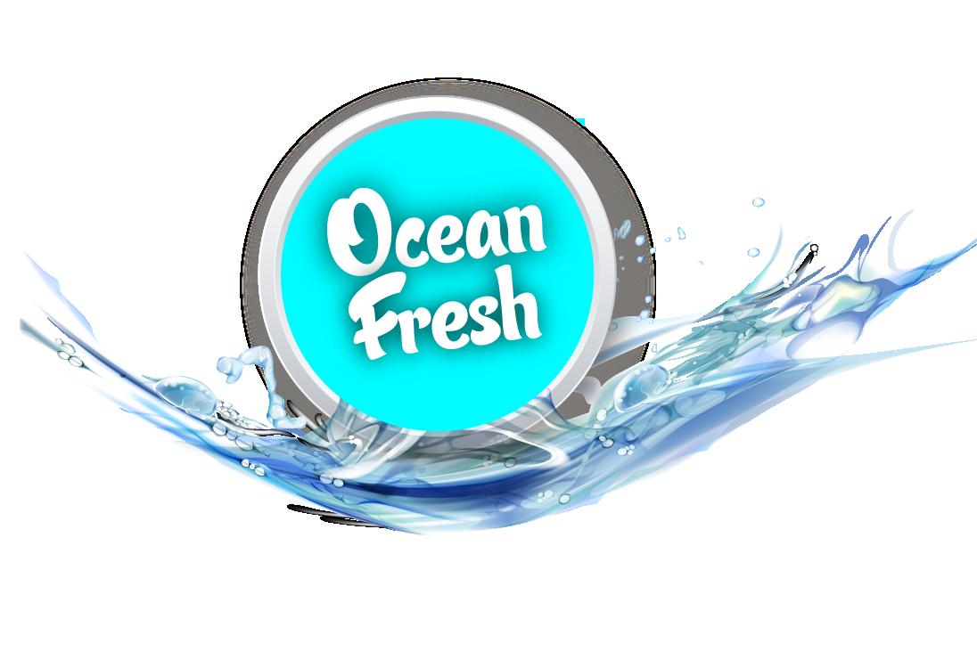 Ocean Fresh Cleaning Services ltd